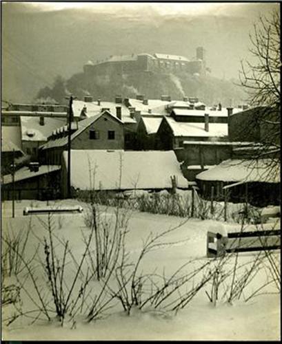 Bela Ljubljana
