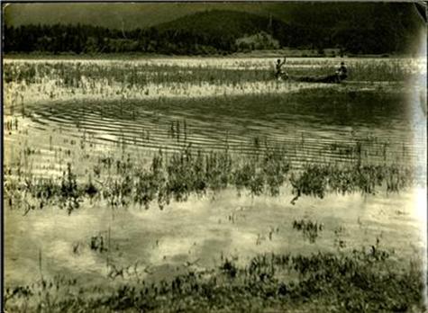 Na Cerkniškem jezeru