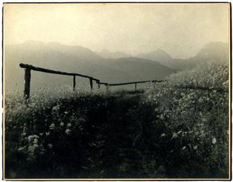 Pot v planine
